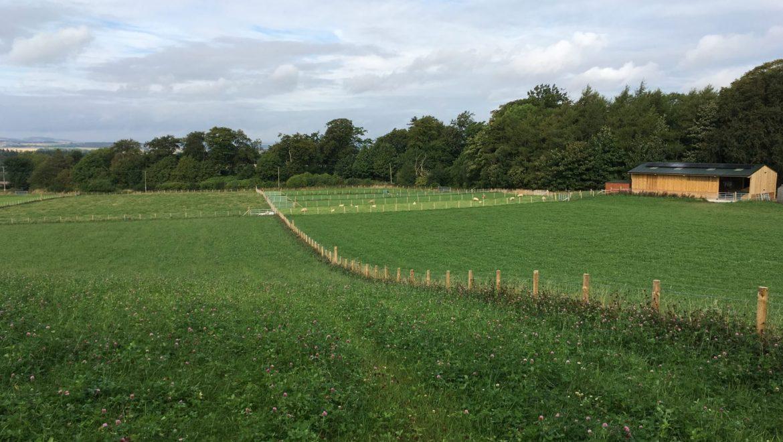 The Parkhill story