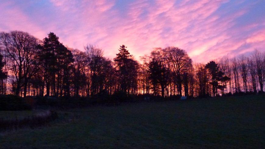 Angus sunrises and sunsets
