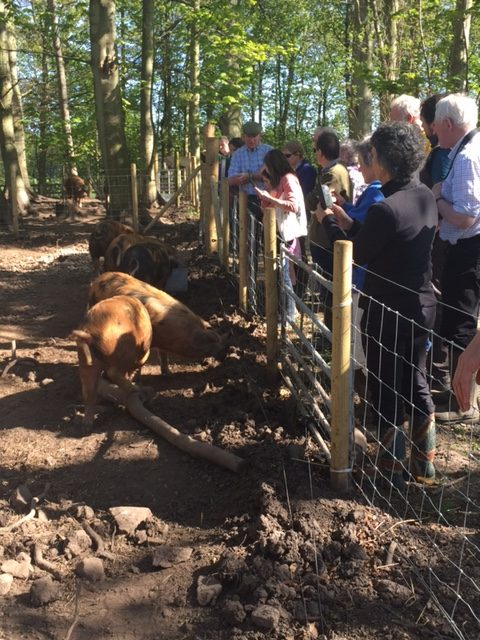 RBST Caledonian Group Open Day